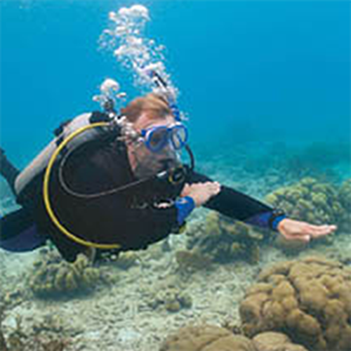 Free PADI Advanced Open Water Diver Course Option 5