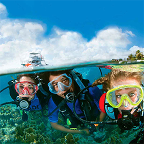PADI Open Water Diver with PADI Drysuit Speciality. Normally £689