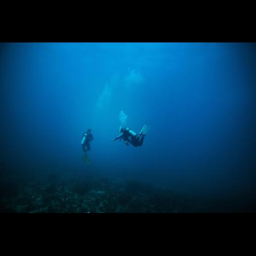 Deep Diver (Excl Material)