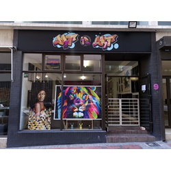 Art In Cape Town Experience