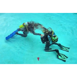 Scuba Review Instructor 2 Hour