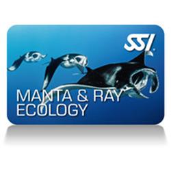 Mantra & Ray Ecology