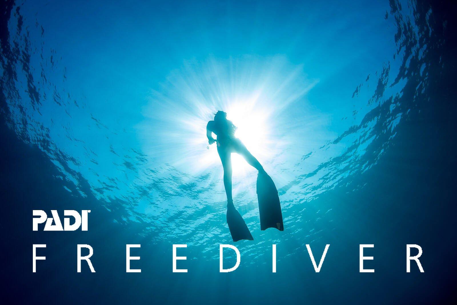 FREEDIVE STORE -