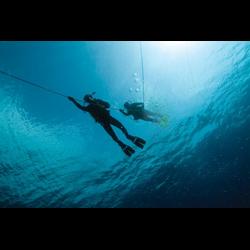 Junior Scuba Diver (jscb)
