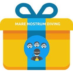 Gift - Scuba Diver