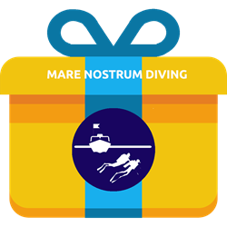 Voucher - Oneday Diving Ustica