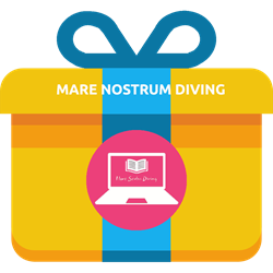 Gift - ElearningTouch