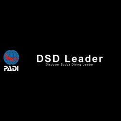 Dsd Leader Internship