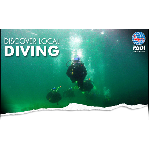 Discover Local Diving