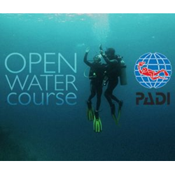 Executive Openwater Diver