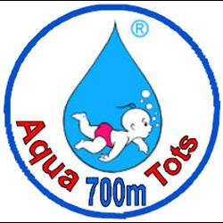 700 Meter Badge