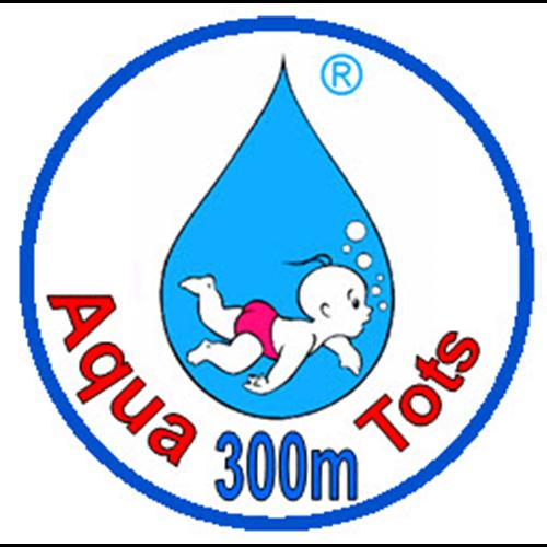 300 Meter Badge